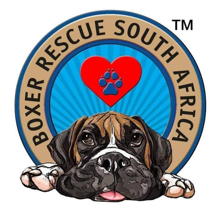 Boxer Rescue South Africa