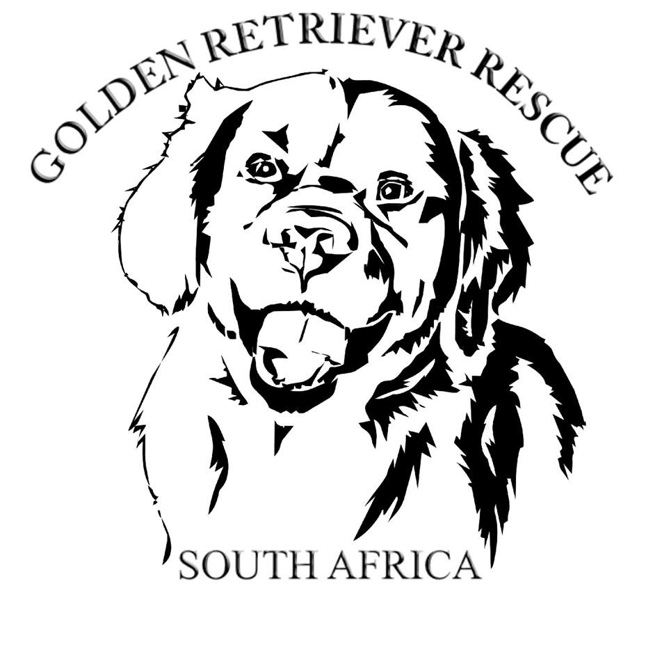 Golden Retriever Rescue South Africa